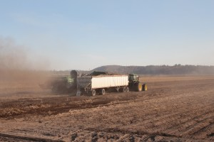 A potato harvester filling a belt-trailer pulled by a tractor with chipping potato seed near Klamath Falls, Oregon.