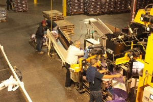 A crew at Gold Dust Potato Processors sewing sacks of chipping potatoes shut and stacking the sacks on a pallet.