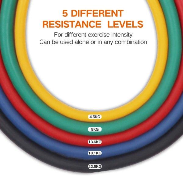 Cuerdas + Bandas elásticas de deporte (set de 17)