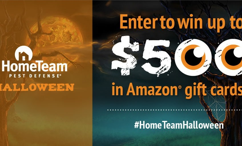 Hometeam Pest Defense $500 Amazon Gift Card Giveaway