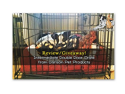 Win a Medium Dual Door Dog Crate