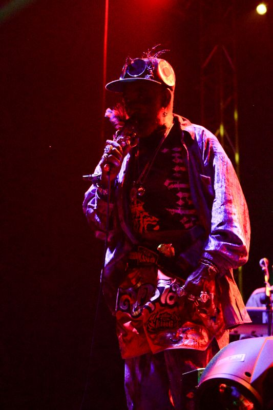 Lee Scratch Perry at Forbidden Fruit on 1st June 2013-1-13