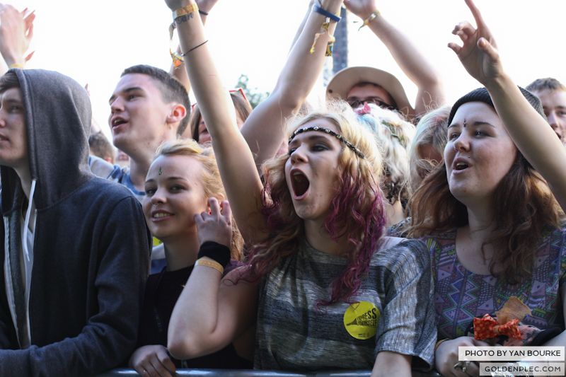 Electric Picnic by Yan Bourke on 30081320