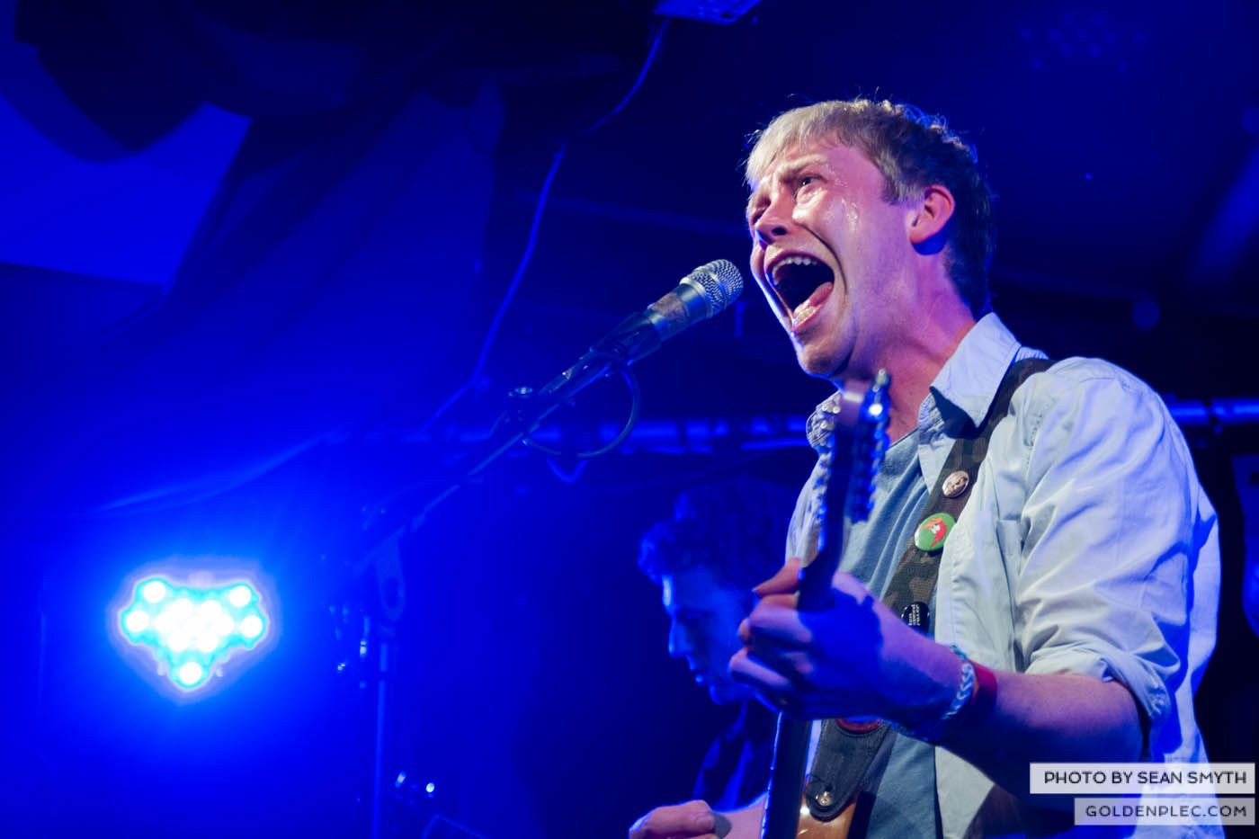 The Flaws at Whelans by Sean Smyth