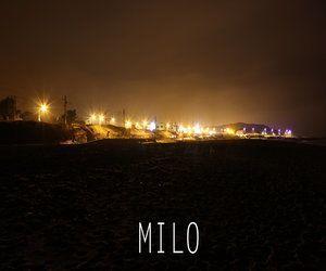 Milo – Milo EP | Review