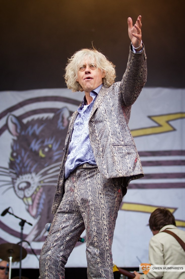The Boomtown Rats at Electric Picnic 2015 by Owen Humphreys (5 of 5)