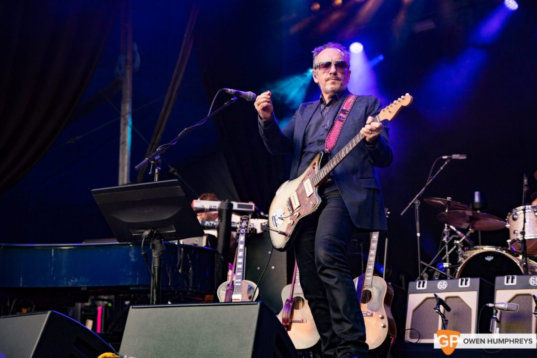Elvis Costello at Iveagh Gardens by Owen Humphreys