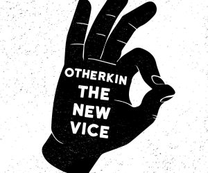 the new vice