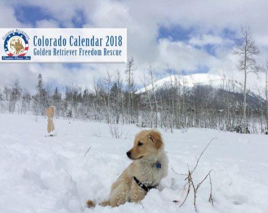 GRFR 2018 Calendar