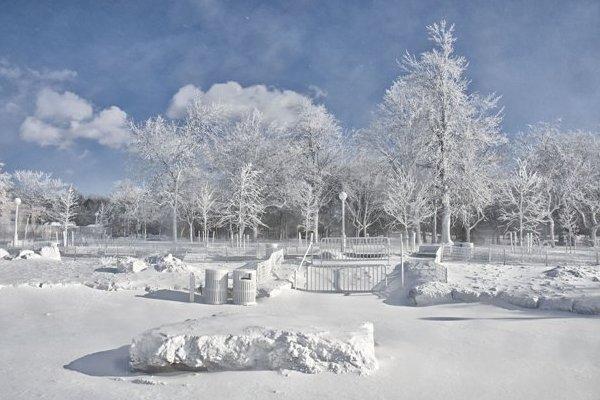 2014 North American Cold Wave
