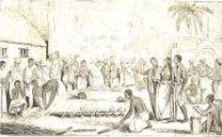 Burning Hindu Widow