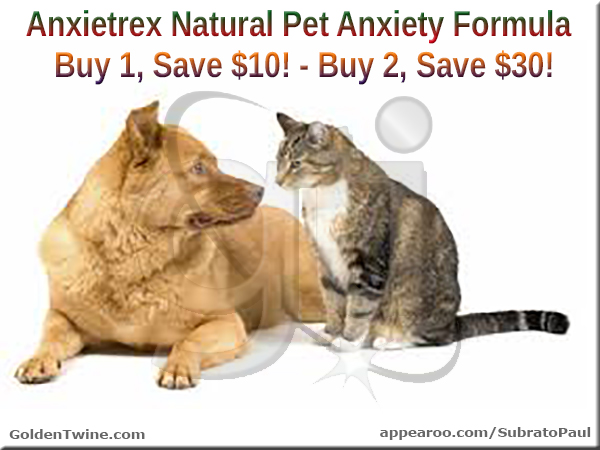 Natural Relief for Pet Anxiety!