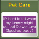Digestive Relief for All Pets