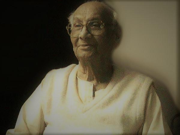 Professor Abdul Qavi Desnavi