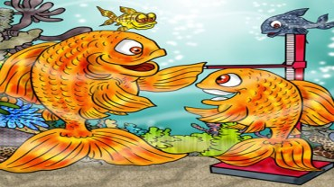 Influence The Growth Rate Of Your Goldfish