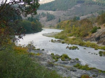 Umpqua River View
