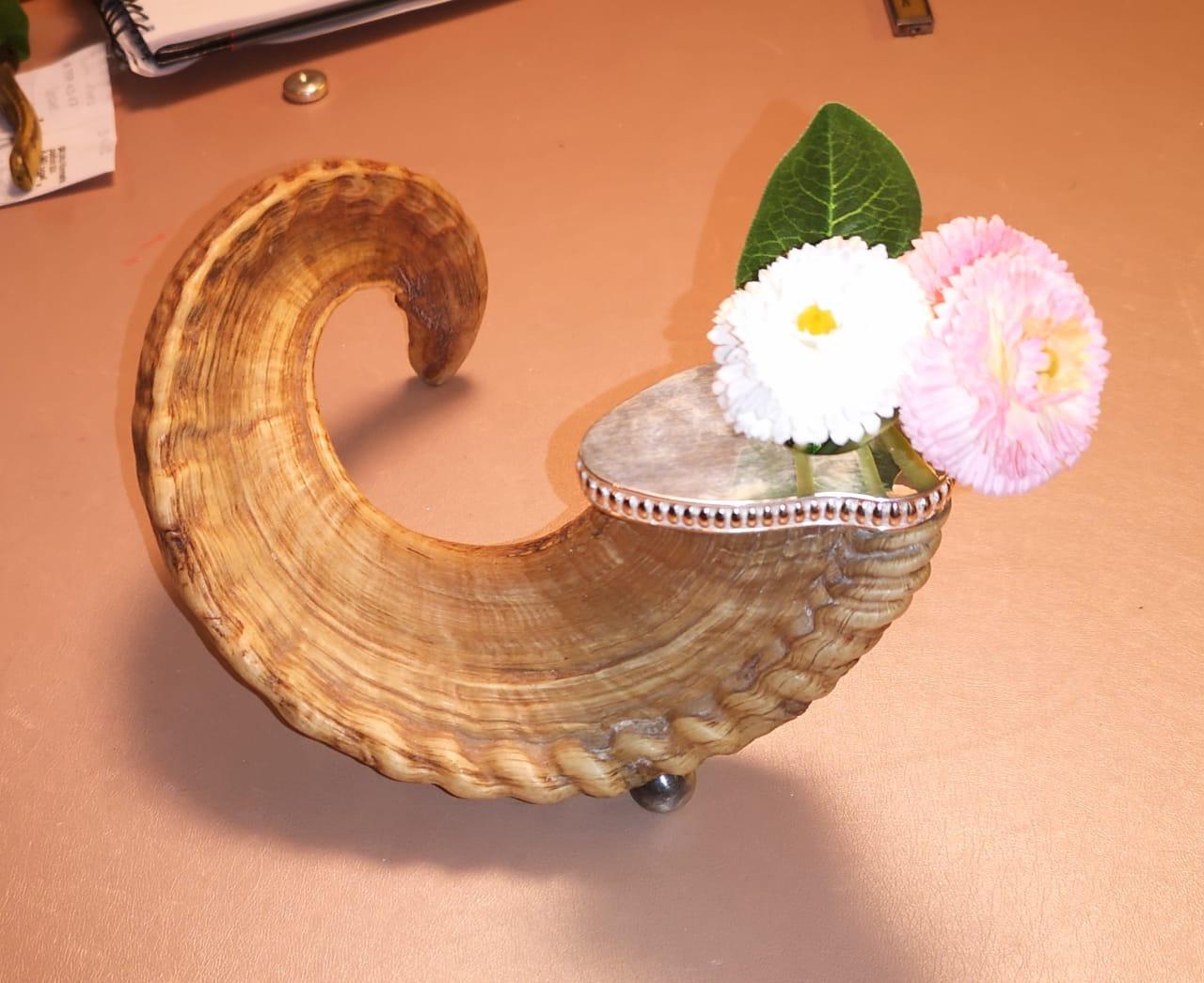 Hornvase
