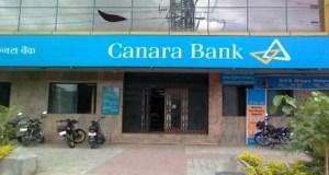 canara bank share price