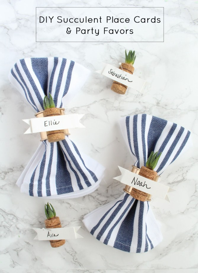 DIY Succulent Place Cards and Party Favors by Gold Standard Workshop