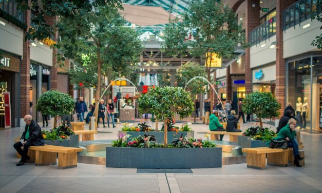 Are Shopping Malls in America Going the Way of the Dodo Bird?