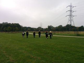 Hackney Marshes - Pylons