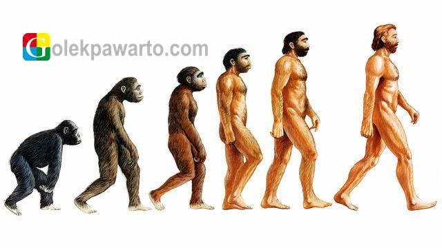 Teori Evolusi Tidak Harus Memahami Manusia Berasal Dari Kera