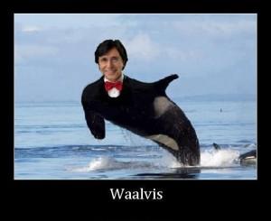 Waalvis