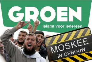 Verkiezing Groen 2014