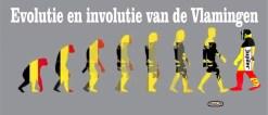 Deze afbeelding heeft een leeg alt-attribuut; de bestandsnaam is Vlaamse-evolutie-1024x448.jpg