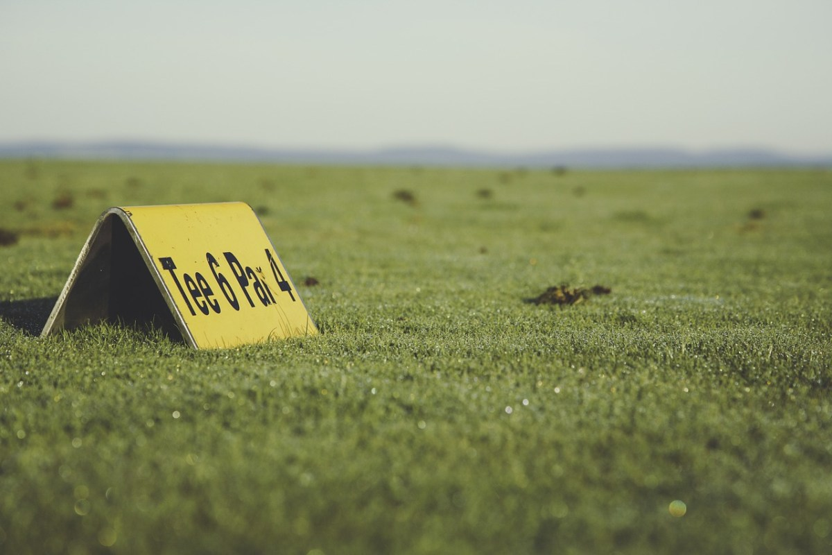 Best Golf Exercise