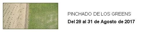 PINCHADO DE LOS GREENS
