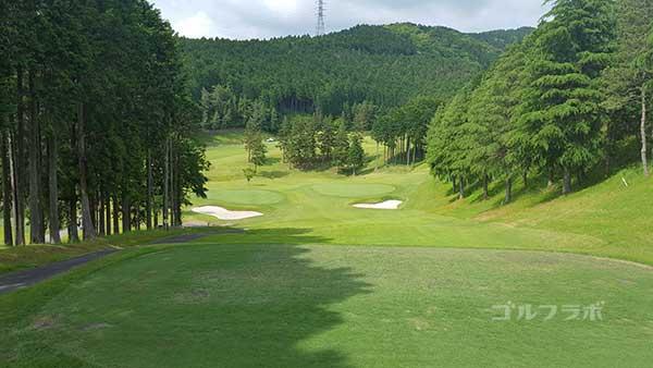 レンブラントゴルフ倶楽部御殿場の駿河コース5番ホールのレディースティ