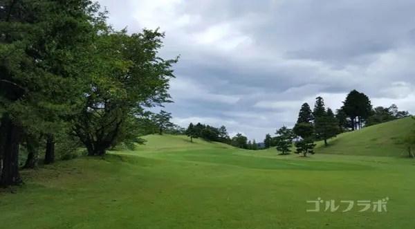 凾南ゴルフ倶楽部の10番ホールのレディースティ