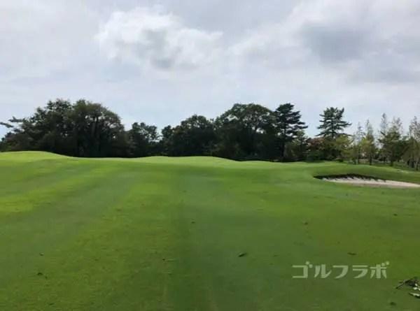 凾南ゴルフ倶楽部の5番ホールのグリーン