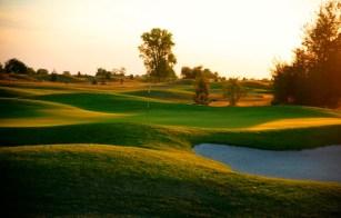 Toya golf 1