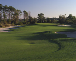 Orlando Golf