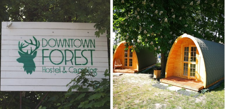 Downtown forest camping Vilnius Lithuania