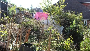 Our Garden Renovation | Part One | Golly Miss Holly