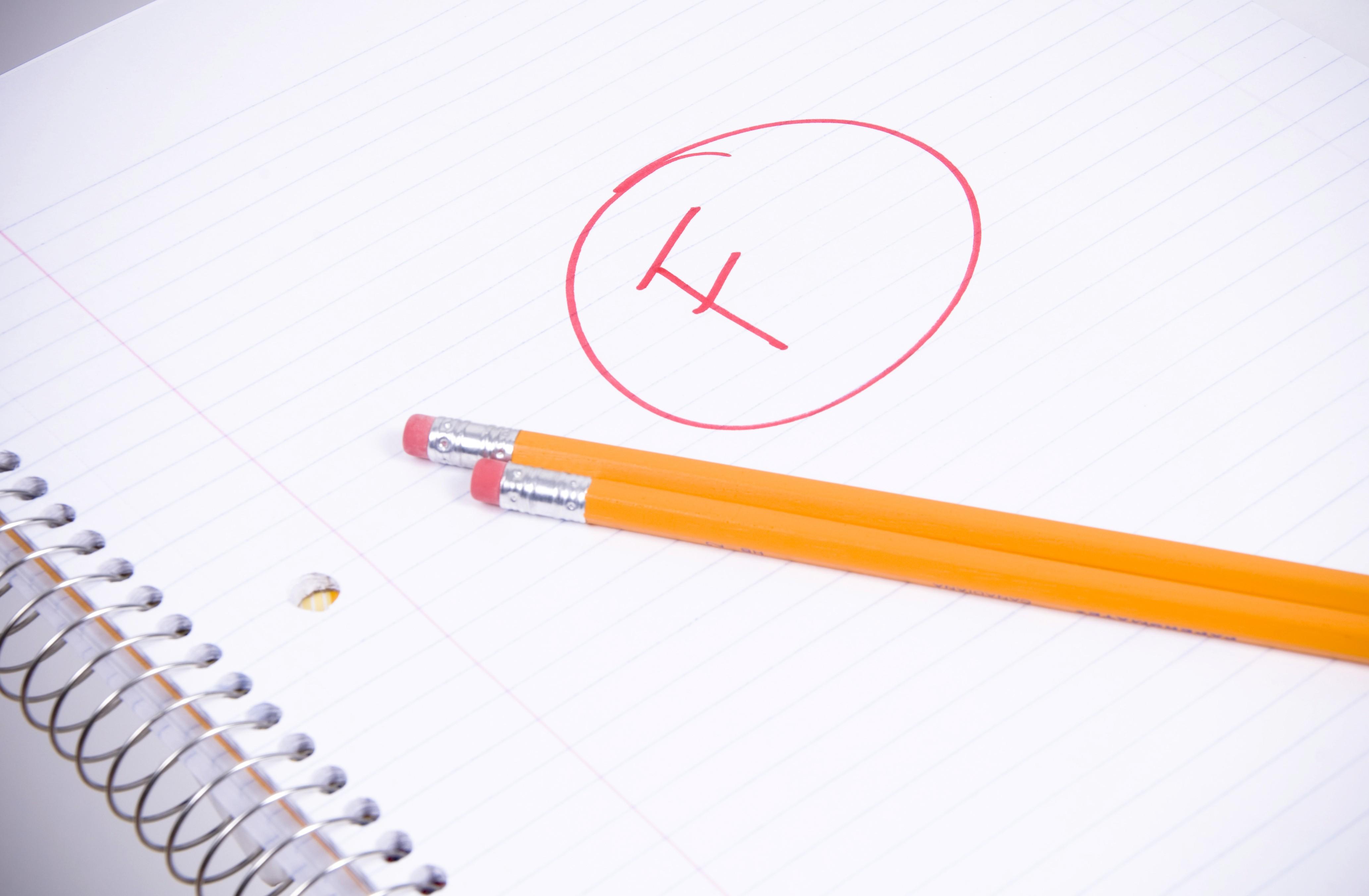 Persuasive Essay 4th Grade K12 Reader