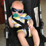 baby on Standard stroller