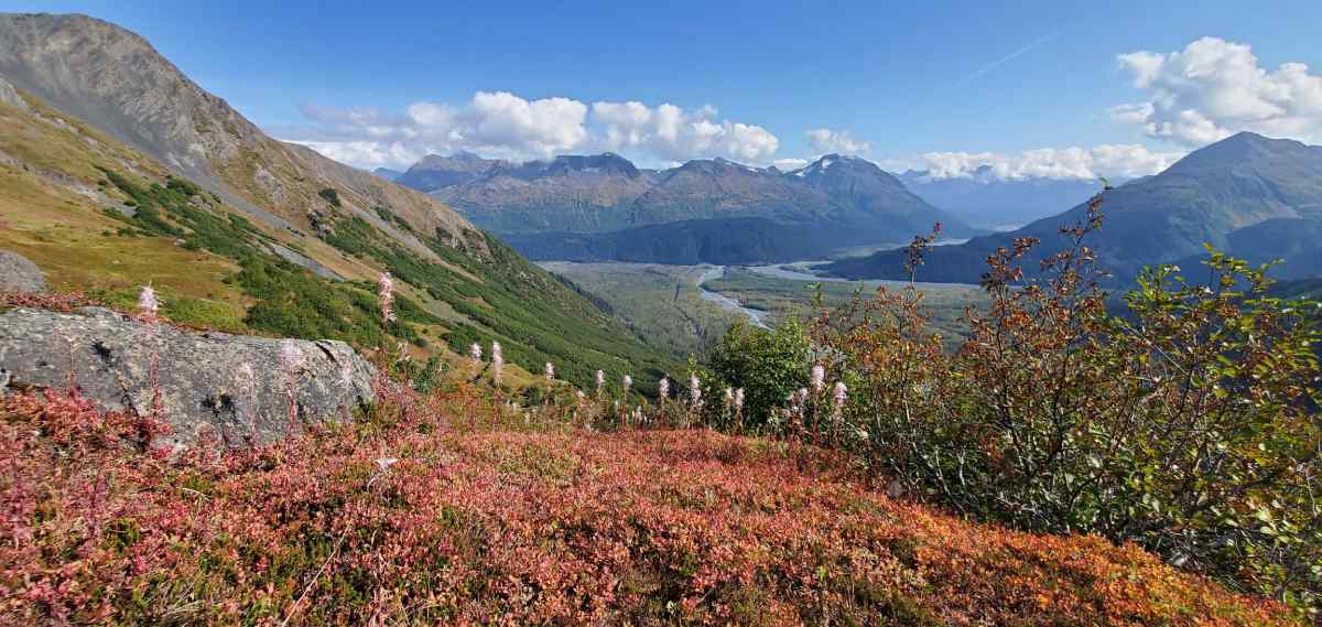 Photo of the landscape surrounding Exit Glacier in Alaska on Gondwana Ecotour's Glaciers & Grizzlies Adventure.