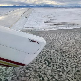 Take a small plane to see the polar bears