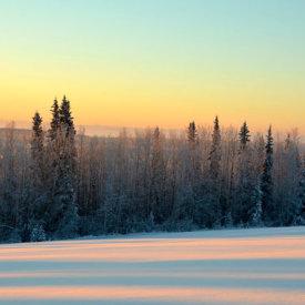 Morning Sun Peeks Over the Forest Outside Fairbanks
