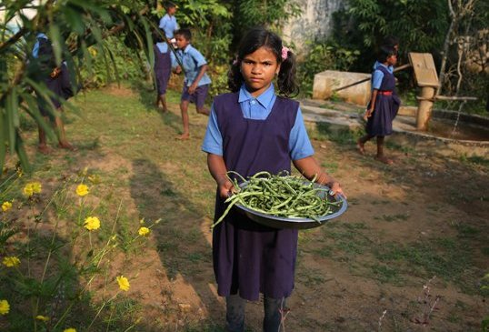 कटेकल्याण ब्लॉक की बेंगलूर स्थित प्राथमिक शाला में है किचन गार्डन; यूनिसेफ ने स्कूल में किचन गार्डन को सराहा