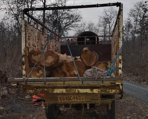 sagon-wood-captured-8-april-2021
