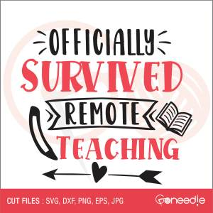 Officially Survived Remote Teaching