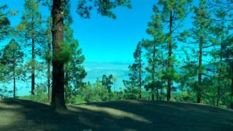 Parcul Național Teide. FOTO Adrian Boioglu