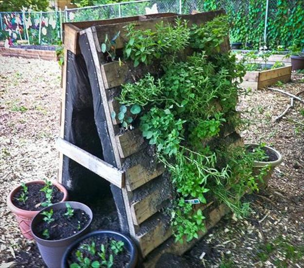 Easy Vegetable Gardening With Pallets 20