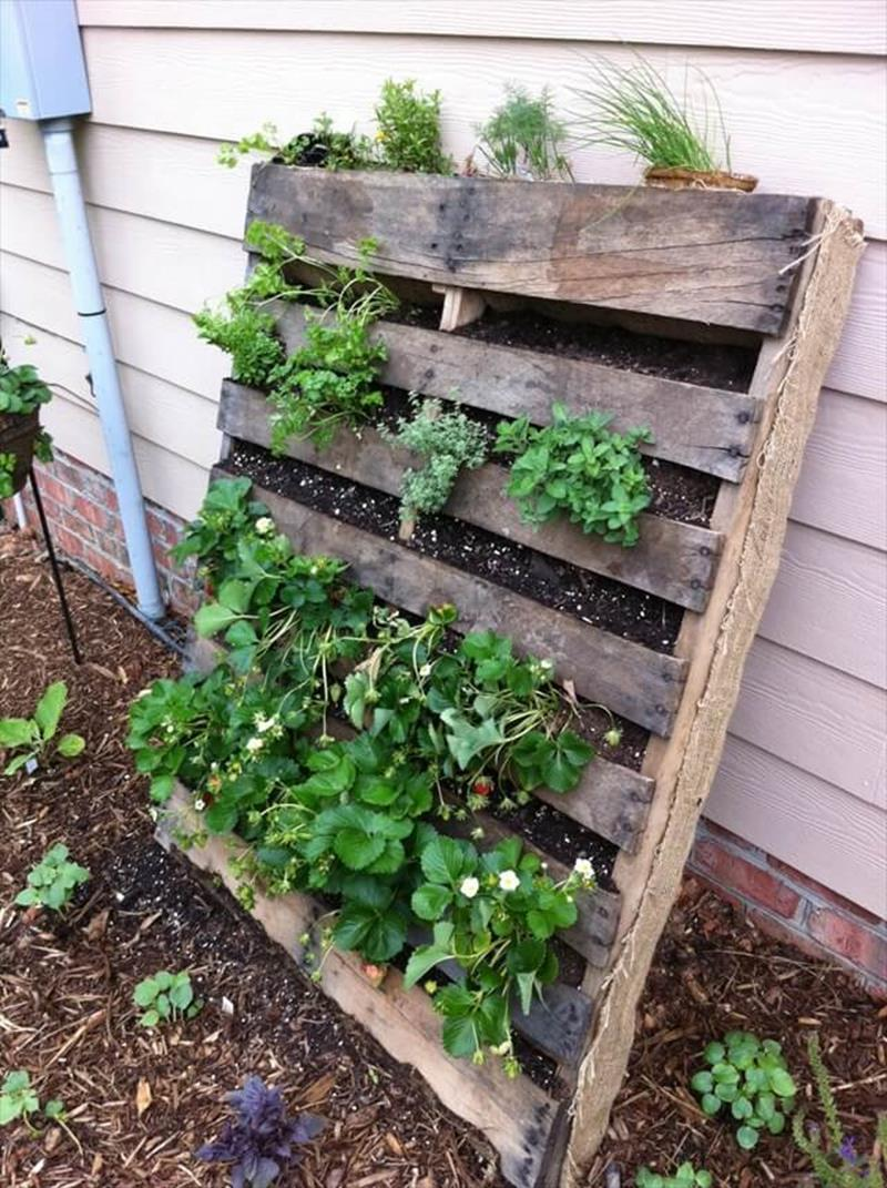 Easy Vegetable Gardening With Pallets 31