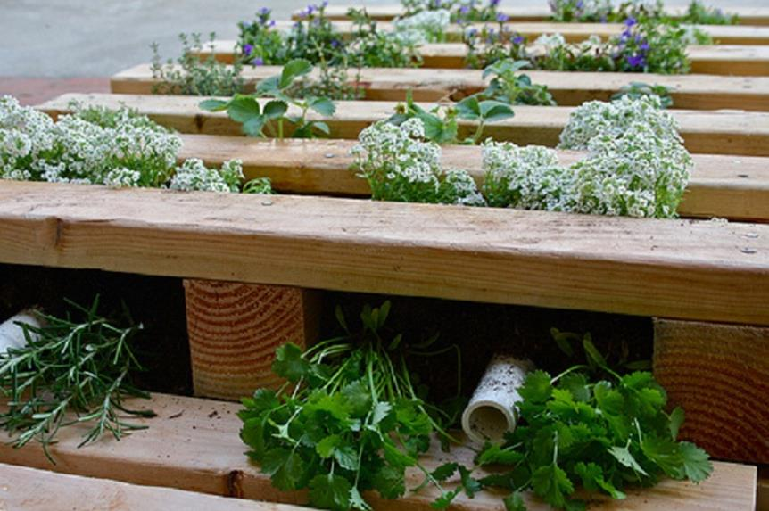 Easy Vegetable Gardening With Pallets 37